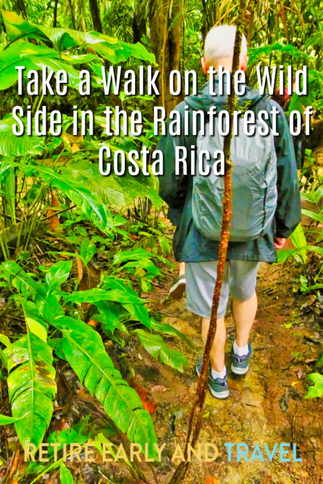 Take a Walk on the Wild Side in the Rainforest of Costa Rica