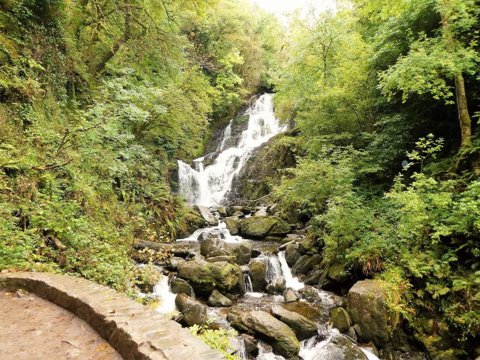torq waterfall