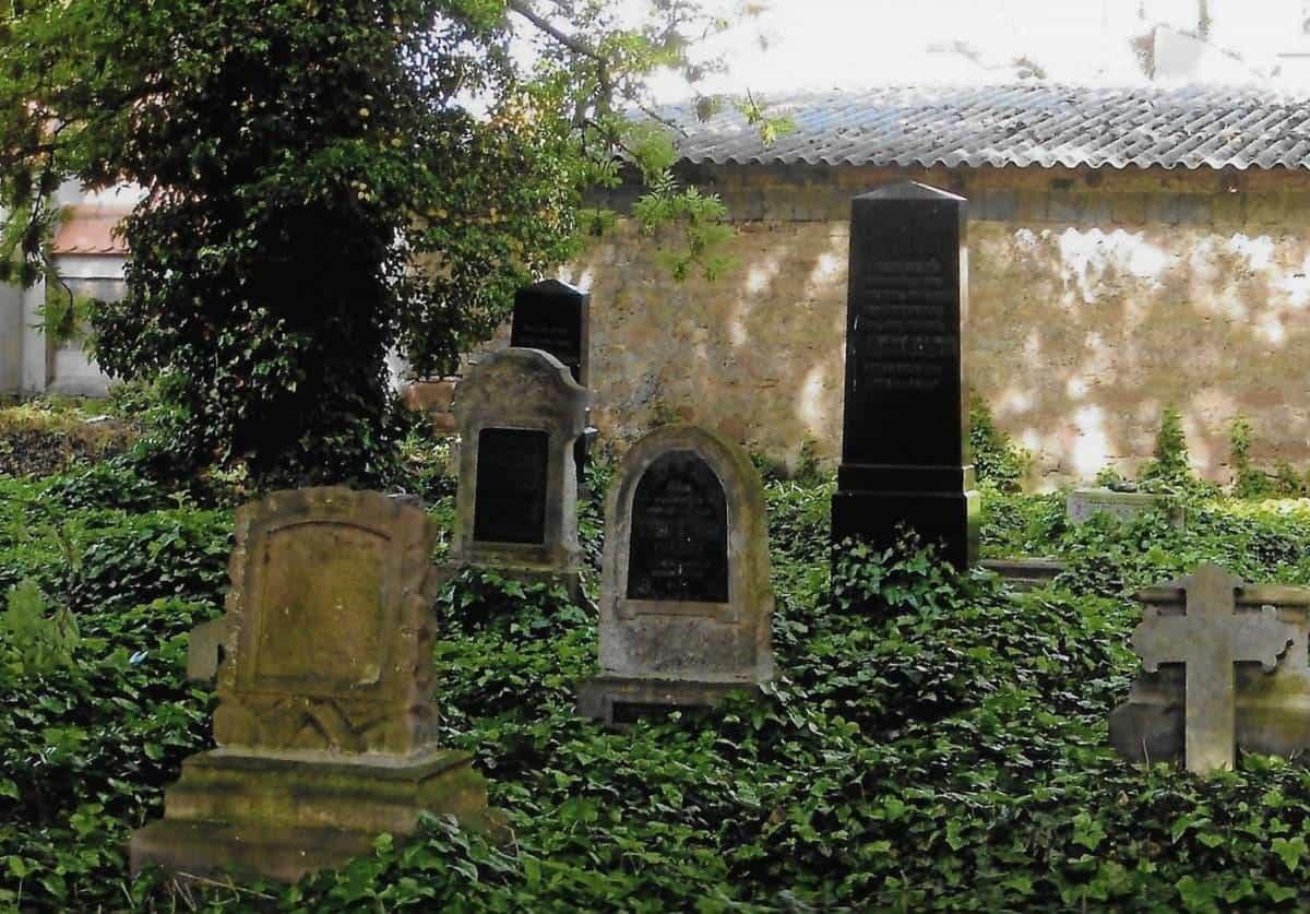 ancestrydna grave