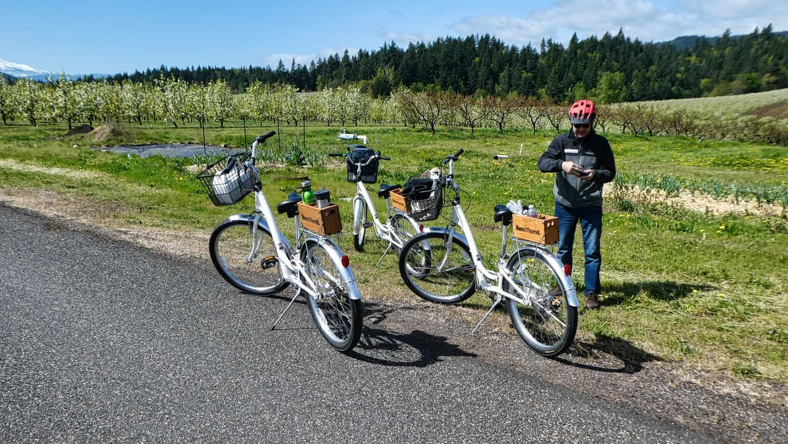 MountNBarrel Bike tours - Columbia Gorge Wine