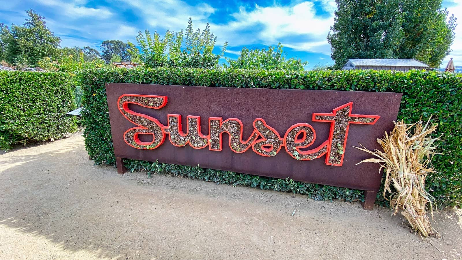Sonoma wine itinerary