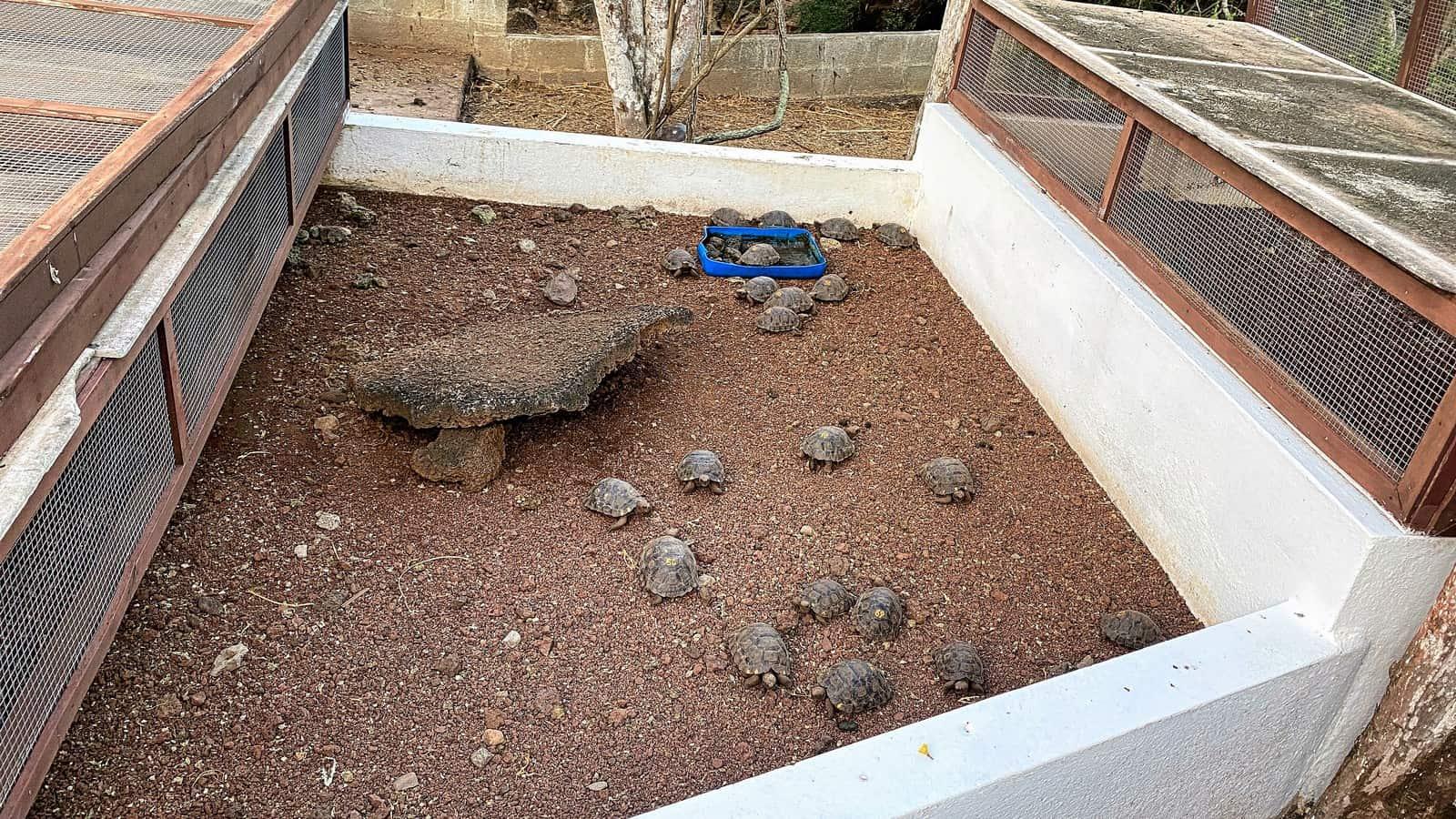 Galapagos Darwin Center